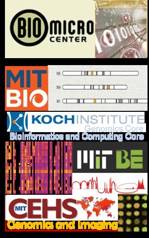 BMC Logo Large.png