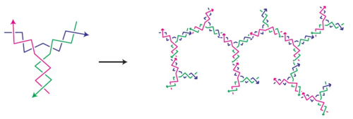 Figure 6. Y-DNA and its polymerization. (From Um S H, et al, Nature Materials, 2006(5): 797-801.)