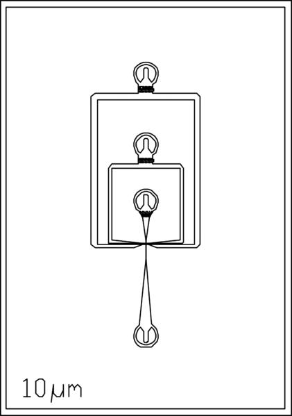 File:10um 3 inlets.png