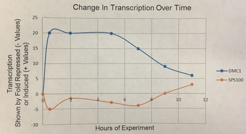 Change in Transcription Over Time Graph