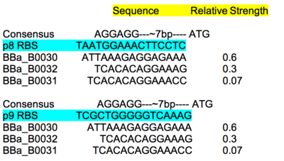 RBS characterization table