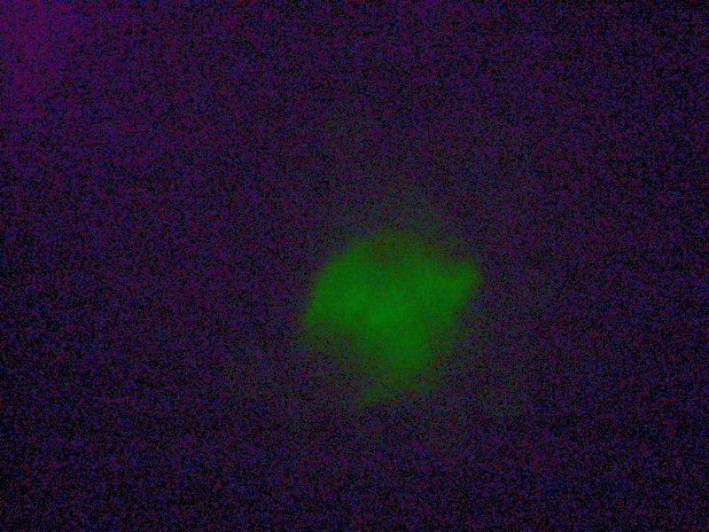 File:IC07 image157b.jpg