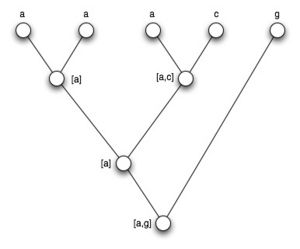L5 tree.jpg