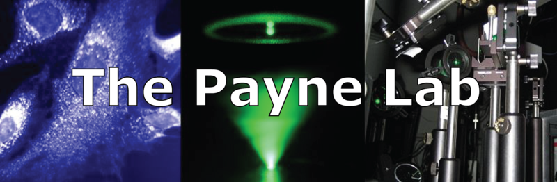 Image:Payne lab new banner.png