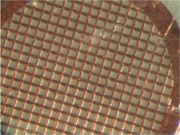 Copper TEM grid with carbon mesh, photographed at 60X magnification
