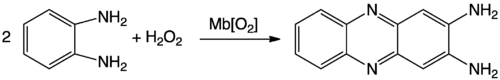 OPD catalysis reaction.png