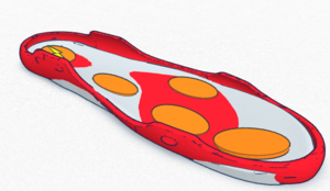 Side view of the SmartSole (1).