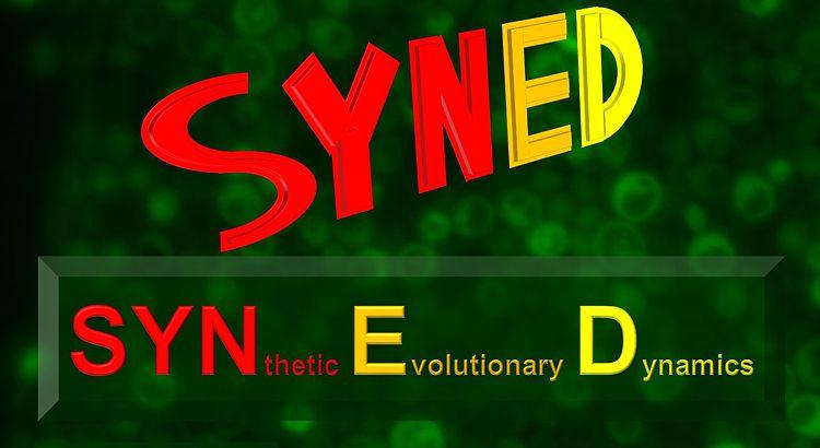 SynED-Lab.jpg