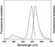 excitation and emission spectra for a fluor, from Invitrogen