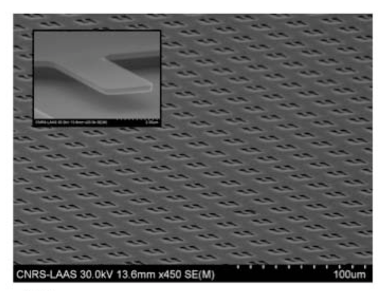 File:Fabricated nanocantilever array.png