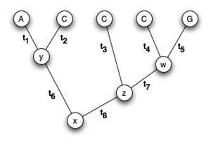 L8 tree1.jpg