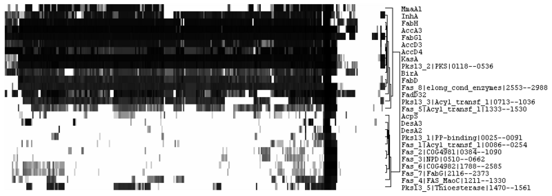File:Chandra-MAP clustering.png