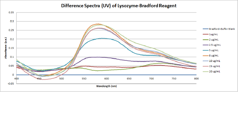 File:Bradford Assay of Lysozyme.png