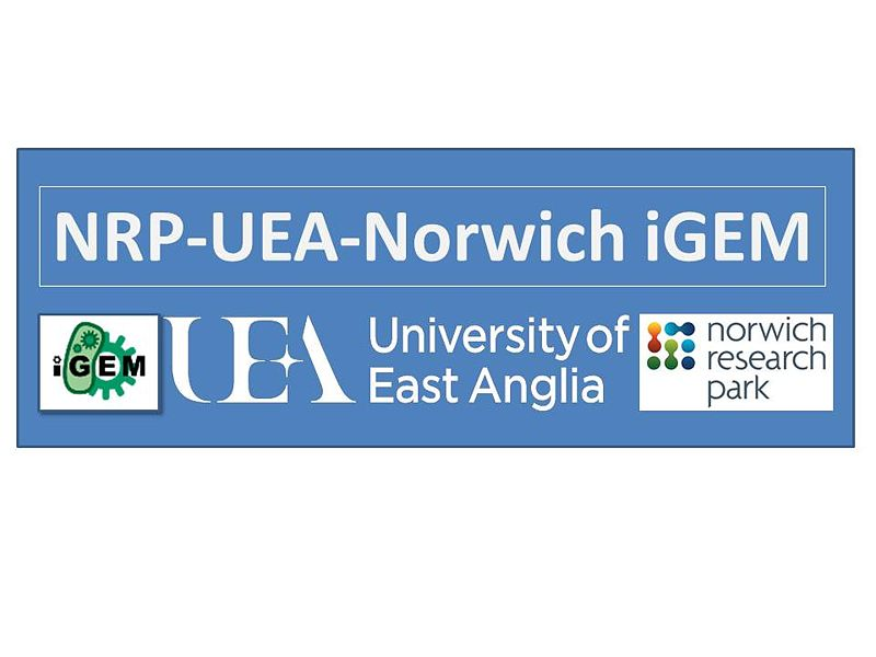File:IGEM logo 2013 (preliminary).jpg