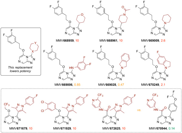 Major Changes to the Triazole's Aromatic Substituent