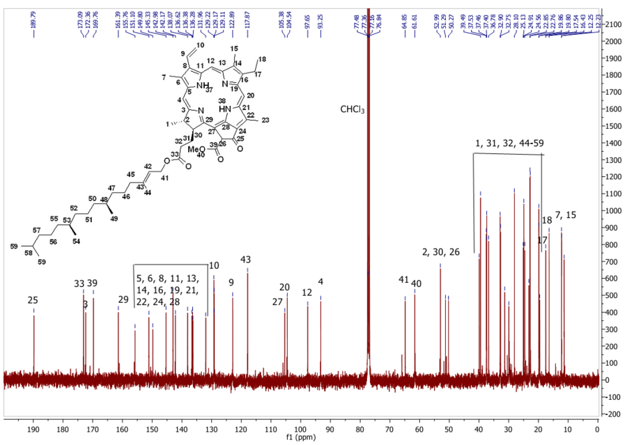 13C NMR of compound 7