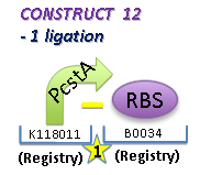 II09 M2 C12.jpg