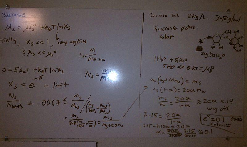 File:MTC Feb15 sucrose solubility.jpg
