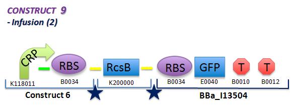 File:II09 ConstM2bb.jpg
