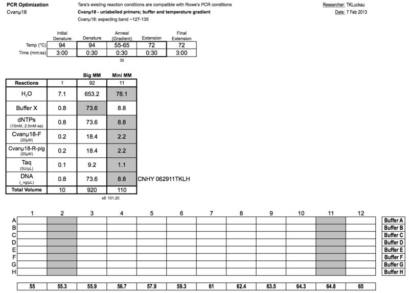 20130207 PCRc.png
