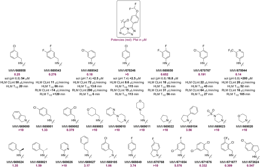 Amides Synthesised and Tested pre-OSM