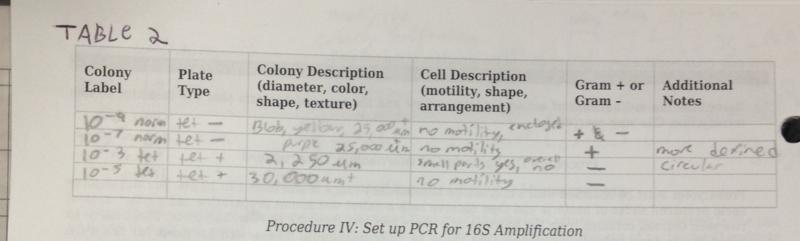 File:Microorganisms Table2.jpg