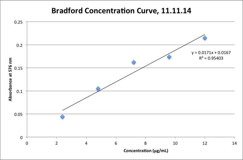 File:11.11.14 Bradford Calibration Curve MGPR.png