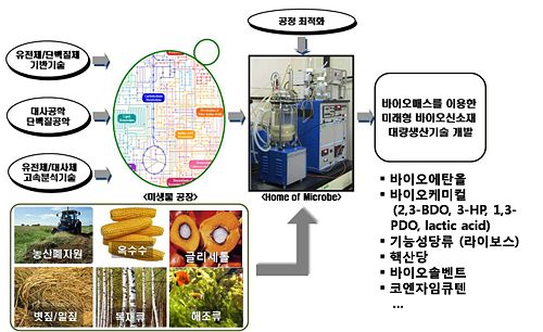 Scheme of microbial factory technology