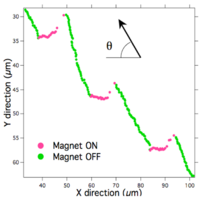MagMT Fig 3b.png
