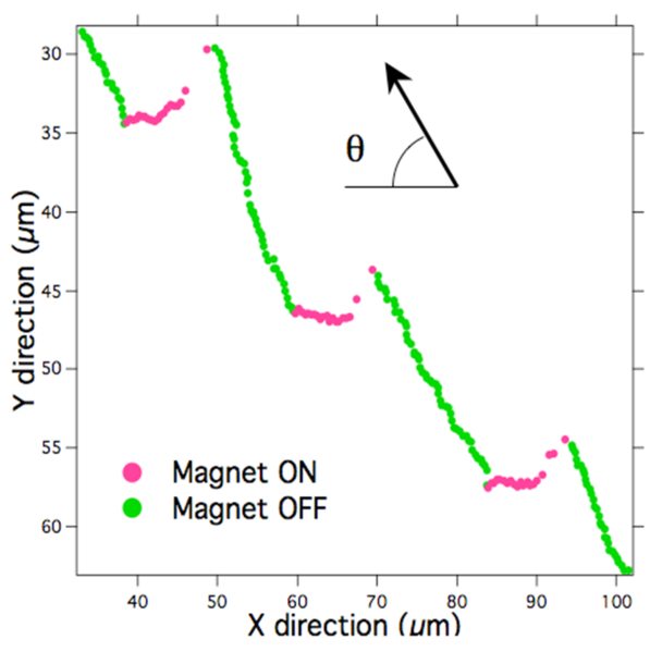 File:MagMT Fig 3b.png