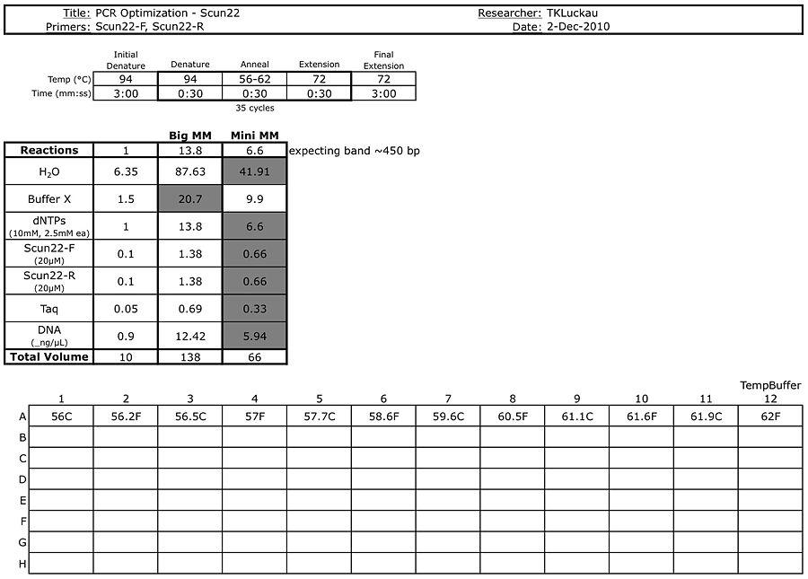 20101202 PCR.jpg