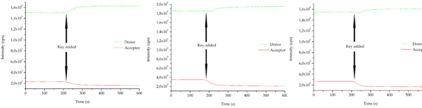 Figure 1: Time-resolved FRET measurements showing a decrease in the fluorescence intensity of the acceptor upon addition of the mir-21 key. The fluorescence intensity of the donor increases when the key is added. The sample was excited at 530 nm and fluorescence was measured at 560 nm (donor) and 665 nm (acceptor).