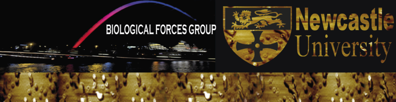 File:Forces banner.png