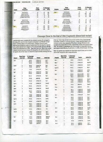 File:NEB sheet 2002.jpg