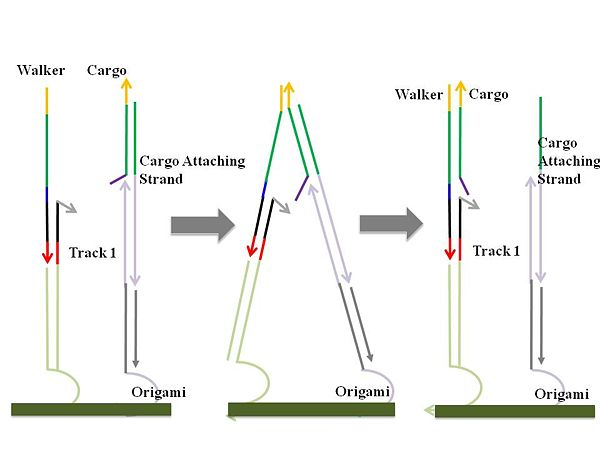 Figure 3. Cargo ick-up mechanism