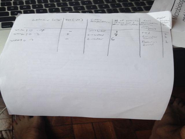 Table 2-ColonyInfo.jpg