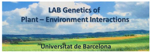 Lab Alcazar.png