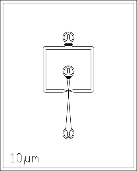 File:10um 2 inlets.png