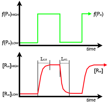Figure 6.  Latency is the time it takes for the output signal of a device to reach a new level given a change in the level of the input signal. The green curve shows the input signal as a function of time; the red curve is the output signal as a function of time.  Note that as the input signal level changes that it takes some time (L) for the output signal to reach its new level.  Click to enlarge.