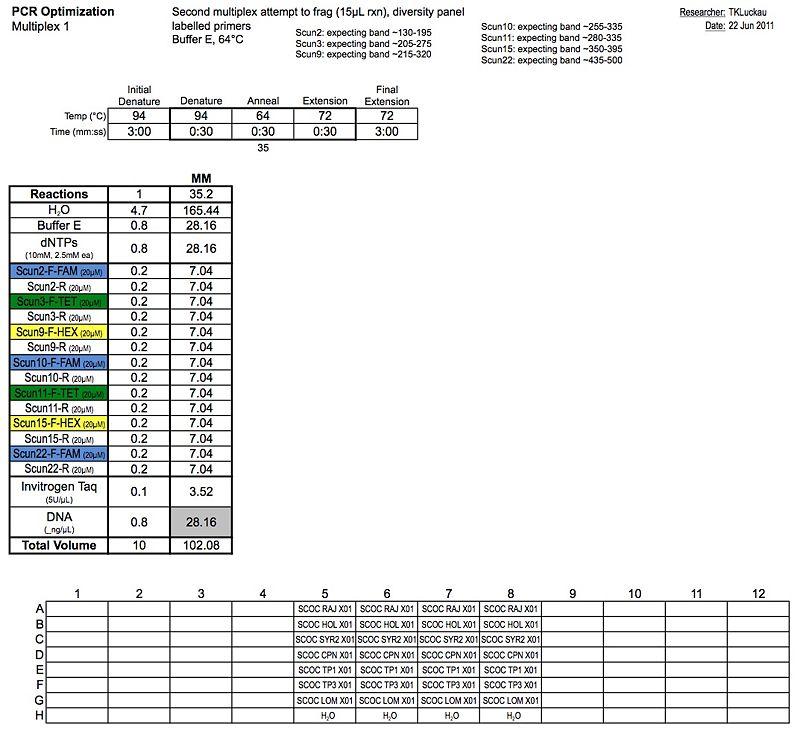 20110622 PCR.jpg