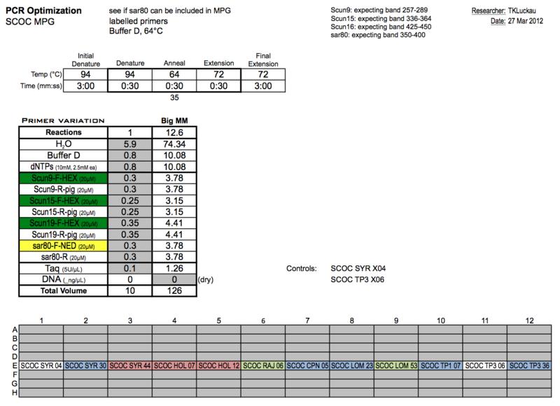 20120327 PCRc.png