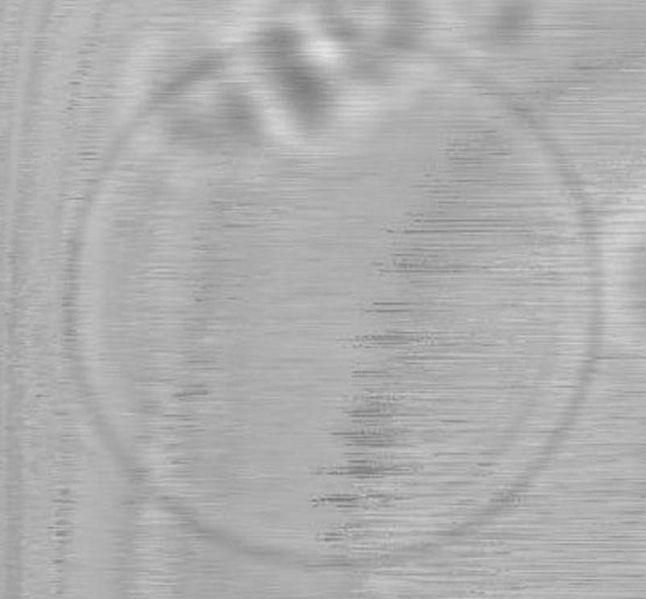 File:BM12 nanosaurs QDtransmlight.jpg