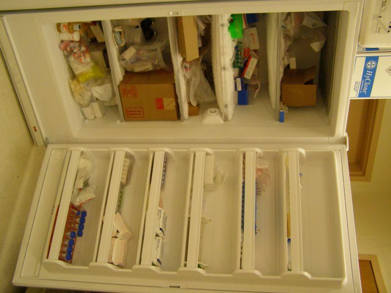 File:CASTLab refrigerator.jpg