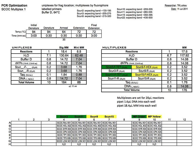 File:20110711 PCR2.jpg