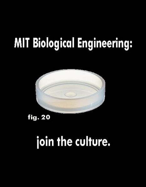 File:Jointheculture2.jpg