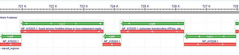 Native operon context from NCBI