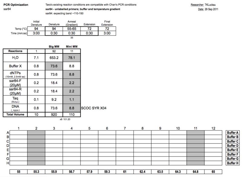 20110929 PCRb.png