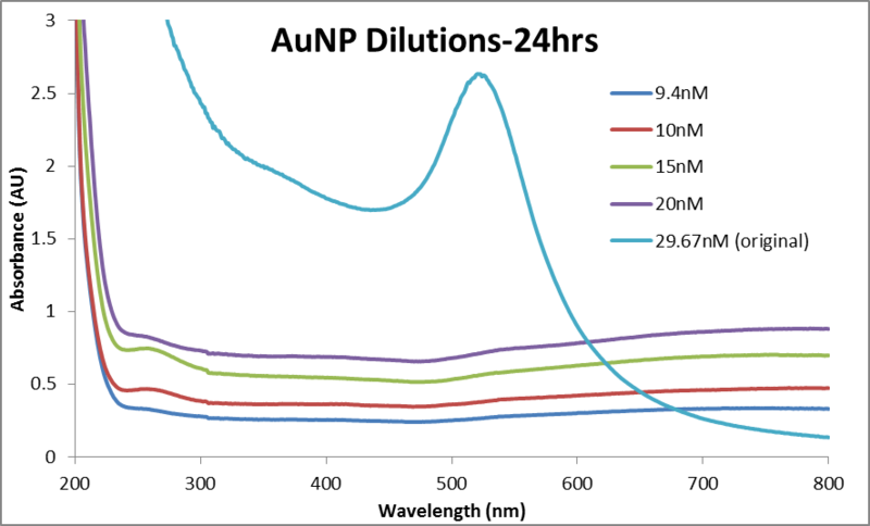 File:Abs data AuNP dilutions 24hr 0614.png