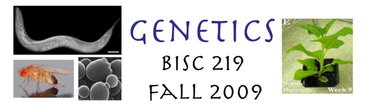 Genetics 219 Banner.png