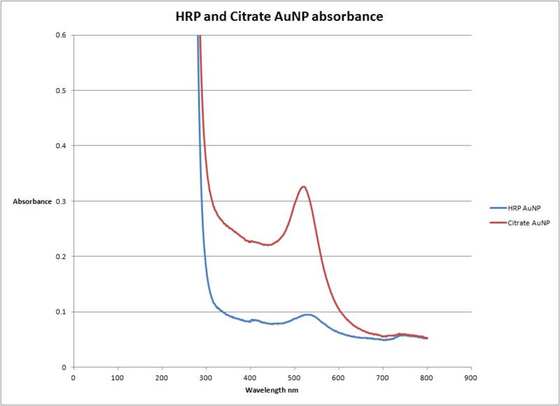 File:HRP and Citrate AuNP.png